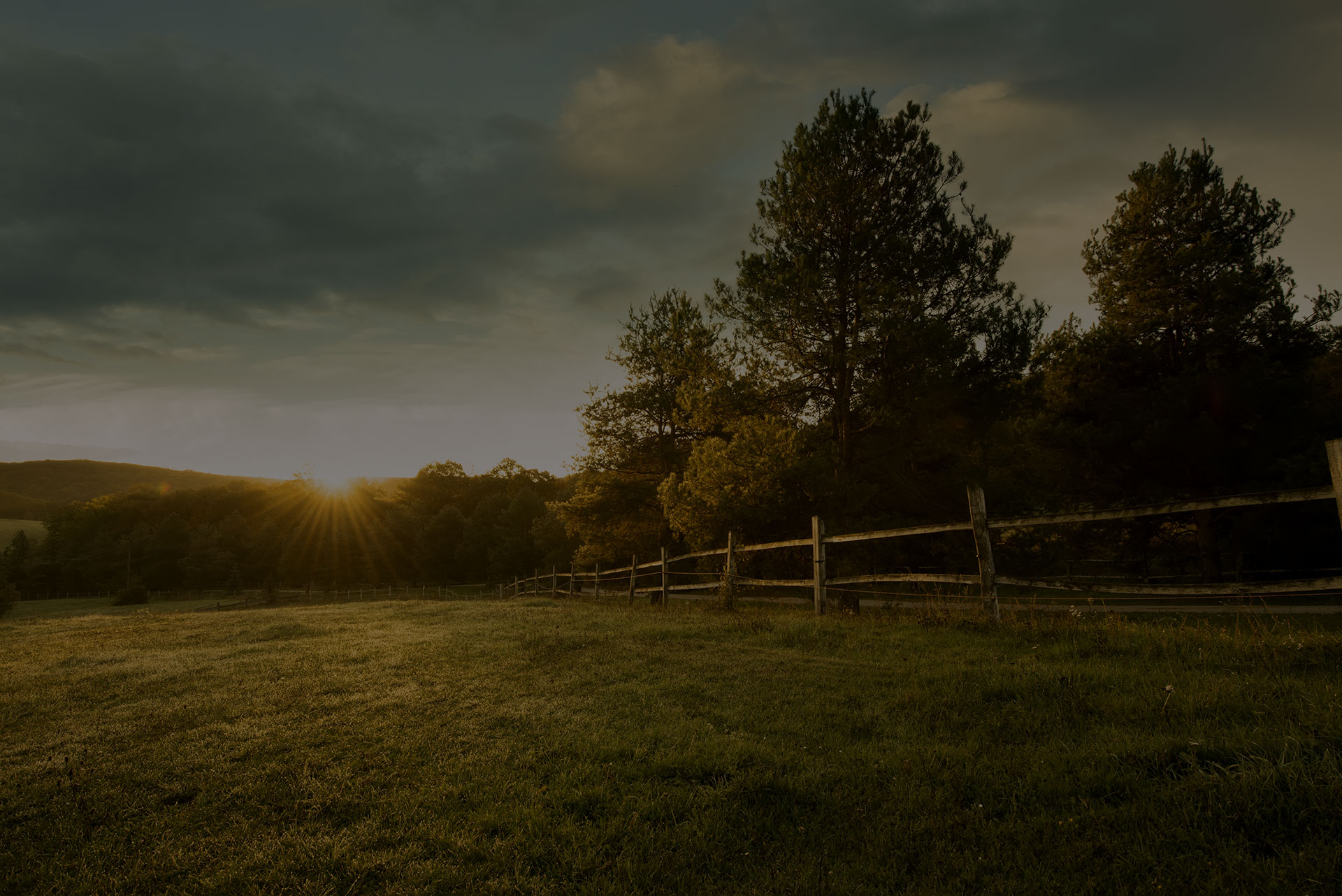 Image of a beautiful field with sun setting in background.